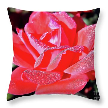 Red - Dew Covered  - Rose Throw Pillow