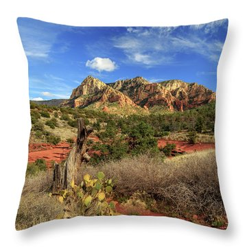 Red Dirt And Cactus In Sedona Throw Pillow by James Eddy