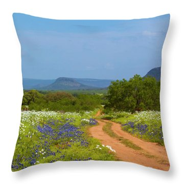 Red Dirt Road With Wild Flowers Throw Pillow