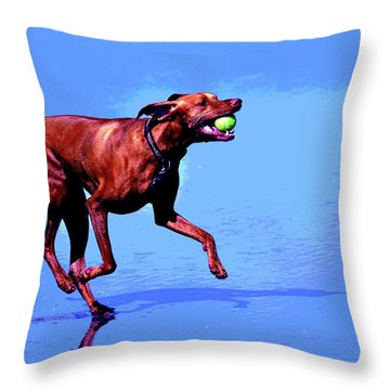 Throw Pillow featuring the photograph Red Dog Running by Howard Bagley