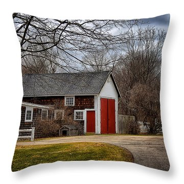 Red Doors Throw Pillow by Tricia Marchlik