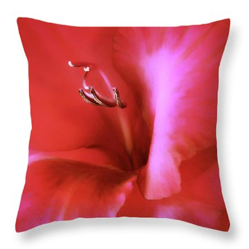 Red Dragon Gladiola Flower Throw Pillow by Jennie Marie Schell