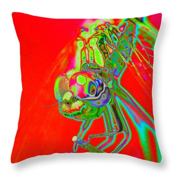 Red Dragon Throw Pillow by Richard Patmore