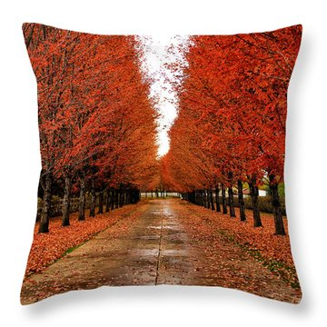 Red Drive Throw Pillow
