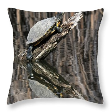 Red Eared Slider Turtle On A Log Throw Pillow