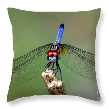 Red Eyed Dragonfly Throw Pillow by Myrna Bradshaw