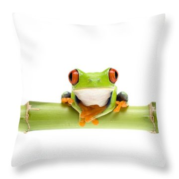 Red-eyed Treefrogs Throw Pillow by Mark Bowler and Photo Researchers