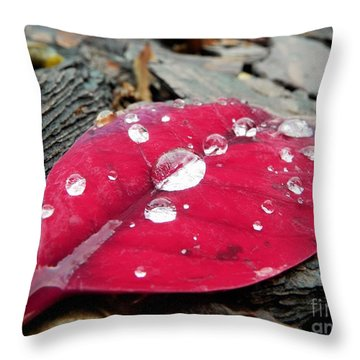 Red Fall Leaf Throw Pillow