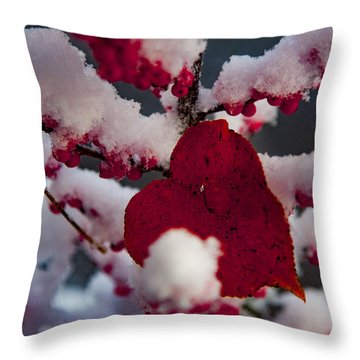 Red Fall Leaf On Snowy Red Berries Throw Pillow