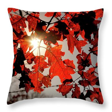 Red Fall Leaves Throw Pillow by Meta Gatschenberger