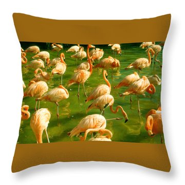 Red Florida Flamingos In Green Water Throw Pillow