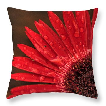 Red Flower 2 Of 2 Throw Pillow