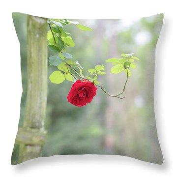 Red Flower Garden Throw Pillow