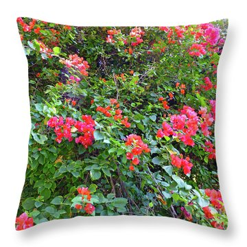 Throw Pillow featuring the photograph Red Flower Hedge by Francesca Mackenney