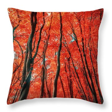 Red Forest Of Sunlight Throw Pillow