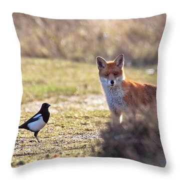 Red Fox And Magpie Throw Pillow