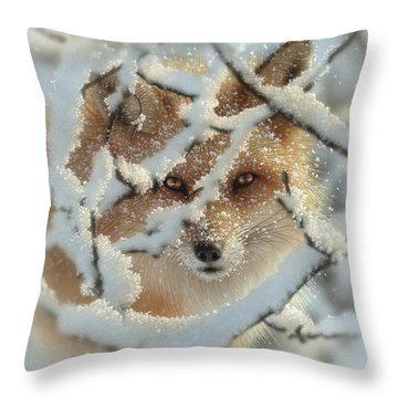 Red Fox - Hide And Seek Throw Pillow