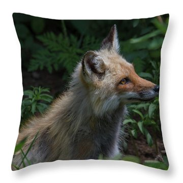 Red Fox In The Forest Throw Pillow