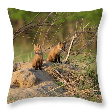 Red Fox Kits Keeping Watch Throw Pillow