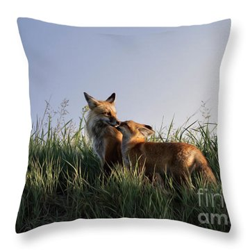 Red Fox Morning Throw Pillow