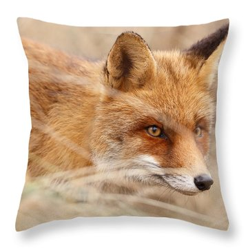 Red Fox On The Hunt Throw Pillow by Roeselien Raimond