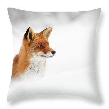 Red Fox Out Of The Blue Throw Pillow