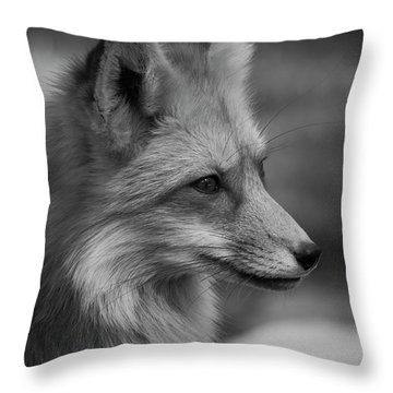 Red Fox Portrait In Black And White Throw Pillow