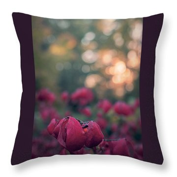 Burning Red II Throw Pillow