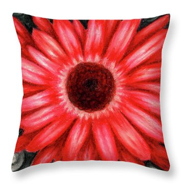 Red Gerbera Daisy Drawing Throw Pillow