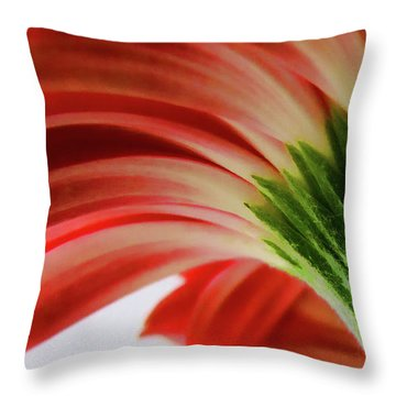 Red Gerbera Throw Pillow