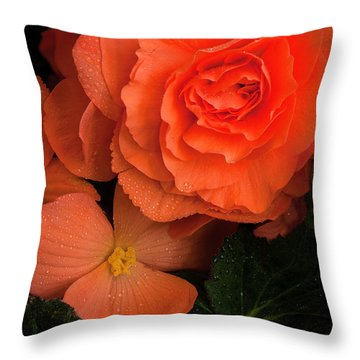 Red Giant Begonia Ruffle Form Throw Pillow