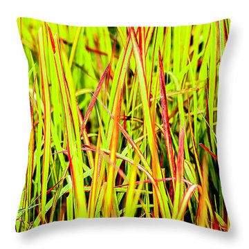 Red Green And Yellow Grass Throw Pillow