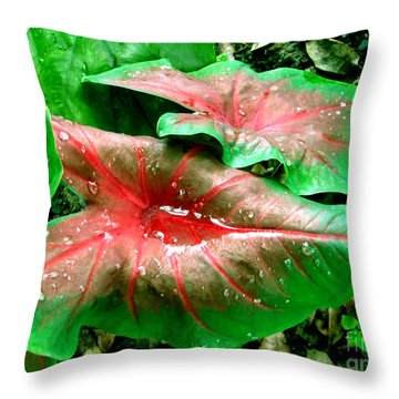 Throw Pillow featuring the painting Red Green Caladium Floral Still Life Morning Rain by Mas Art Studio