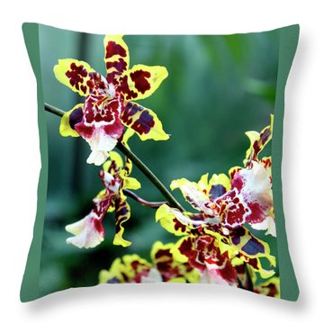Striped Maroon And Yellow Orchid Throw Pillow