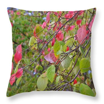 Red Green October Throw Pillow