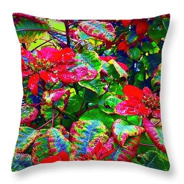 Red Hawaiian Poinsettias In Puna Throw Pillow