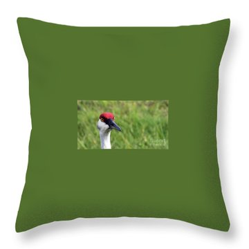 Red Headed Crane Throw Pillow