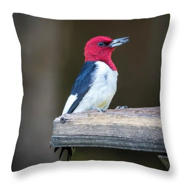 Throw Pillow featuring the photograph Red-headed Woodpecker With Seed  by Ricky L Jones