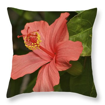 Red Hibiscus Throw Pillow by Michael Peychich