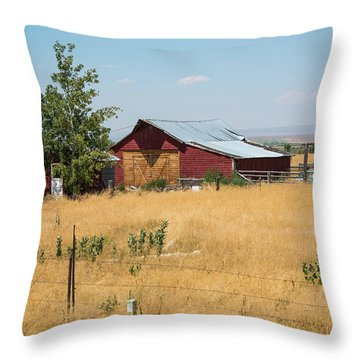 Red Home On The Range Throw Pillow