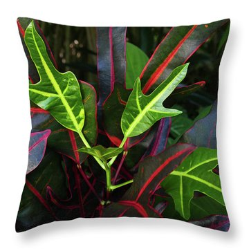 Red Hot And Green Throw Pillow