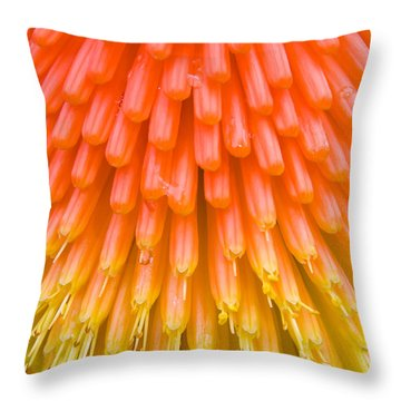 Red Hot Poker Flower Close Up Throw Pillow