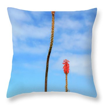 Throw Pillow featuring the photograph Red Hot Pokers by James Eddy