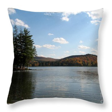 Red House Lake Allegany State Park Ny Throw Pillow