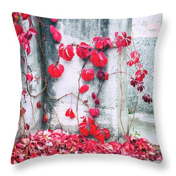 Throw Pillow featuring the photograph Red Ivy Leaves by Silvia Ganora