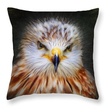 Red Kite Throw Pillow