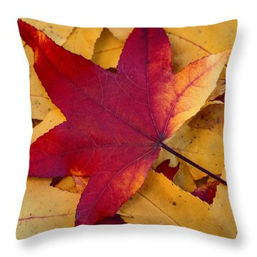 Throw Pillow featuring the photograph Red Leaf by Chevy Fleet