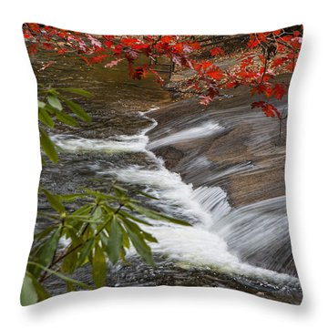 Red Leaf Falls Throw Pillow
