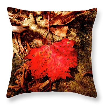 Throw Pillow featuring the photograph Red Leaf by Meta Gatschenberger