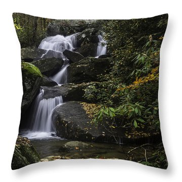 Red Leaf Waterfalls Throw Pillow